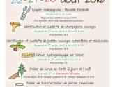 Aff Champigons fête-2016 HR-page-001